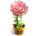 b_weather4_flower4.png