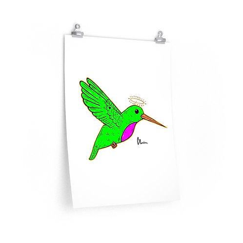 Hummingbird Poster Print