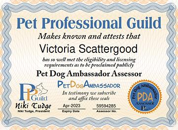 PDA Assessor V Scattergood_001.png