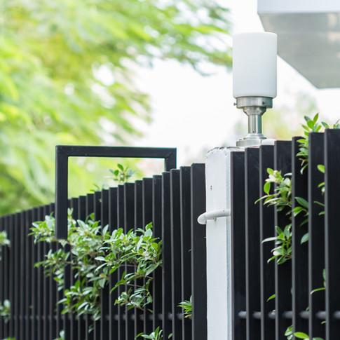 lamp-on-foliage-fence-of-home-523149571_5184x3456.jpeg