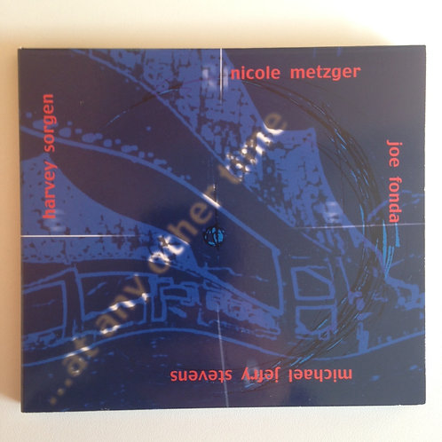 NICOLE METZGER - AT ANY OTHER TIME