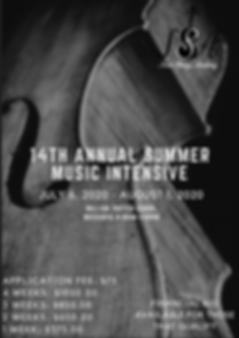 14th annual summer music intensive
