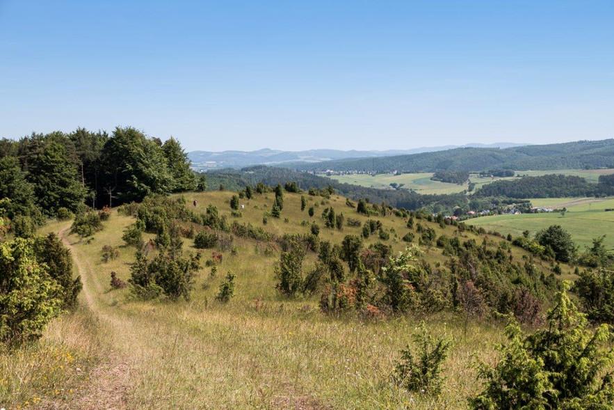 Blick vom Höhnselberg