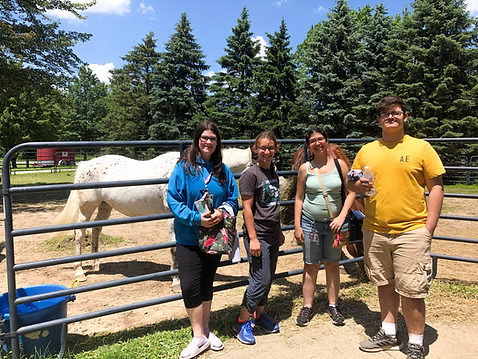 4 teens in front of a  horse