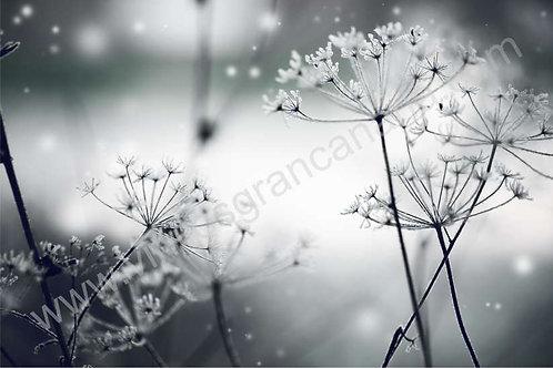 Fotomural floral Ref.0020