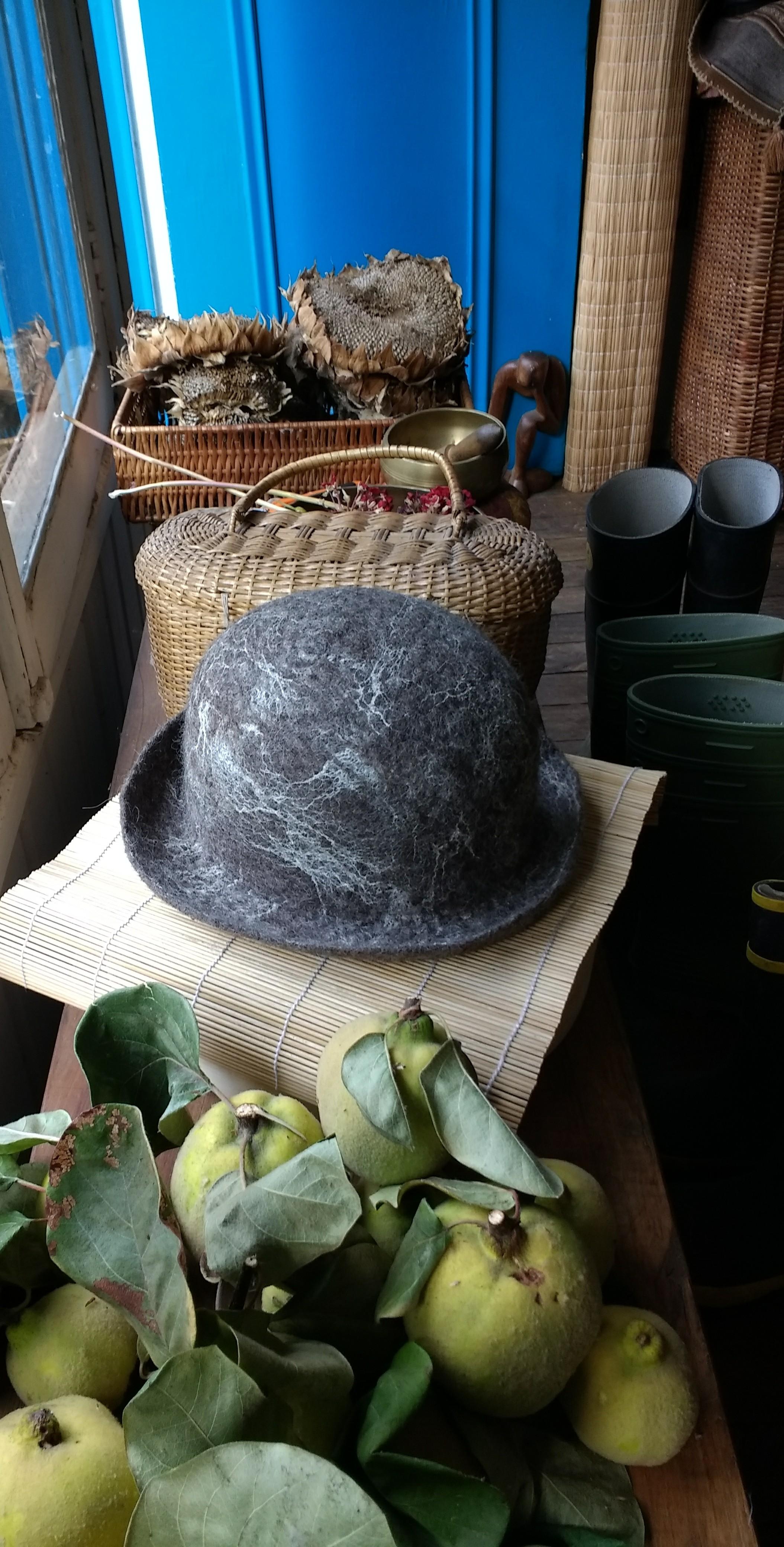 Cocecha sombreril