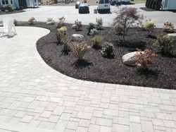 Garden & Stone walkway