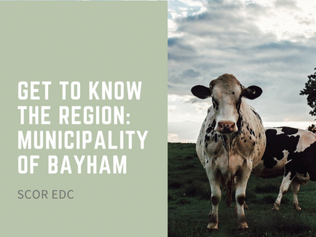 Get to Know the Region: Municipality of Bayham!