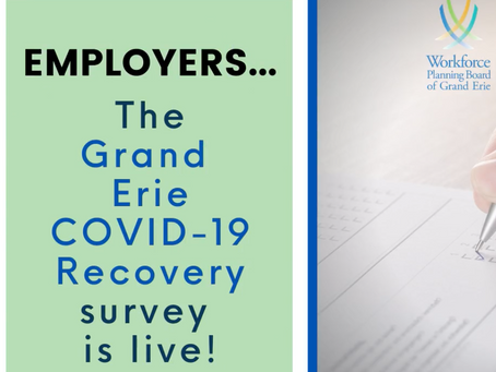 Grand Erie COVID-19 Recovery: Business Insights Survey