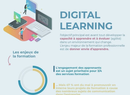 Digital Learning Infographie