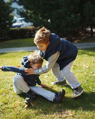 Boys fighting in the Park.jpg