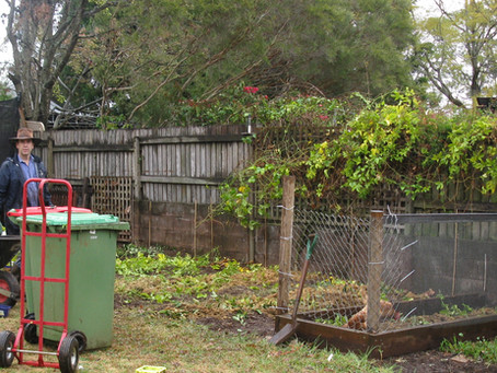 Our Organic Garden Project