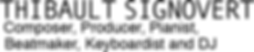 Logo site web thibaultsignovert 11_06_19