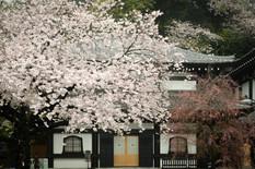 Kannon Museum, Hasedera Temple, Kamakura