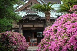Anyoin Temple, Jodo sect, Kamakura