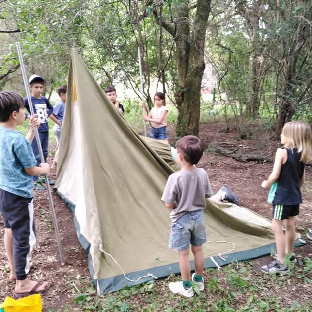 niños campamento.jpeg