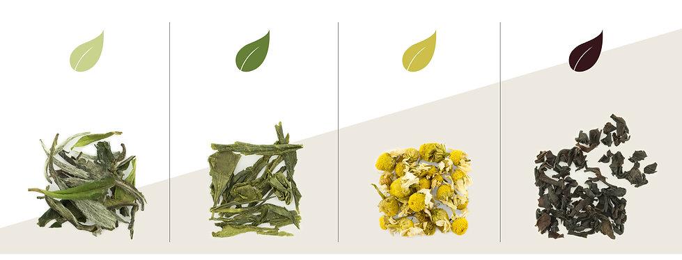 tea steeping temperature-03 copy.jpg