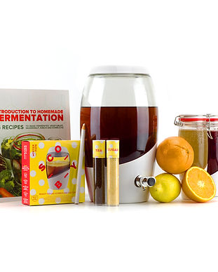 Mortier Pilon_Kombucha Master Kit_Entire