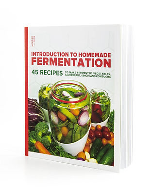 Fermentation recipe book.jpg