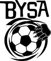BYSA-Logo-Small.jpg