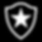 501px-Botafogo_de_Futebol_e_Regatas_logo