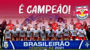National Champions in Brazil