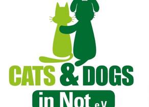 Tierschutz bei cute dogs