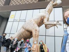 musée d'Histoire naturelle Bx -pâques 2021