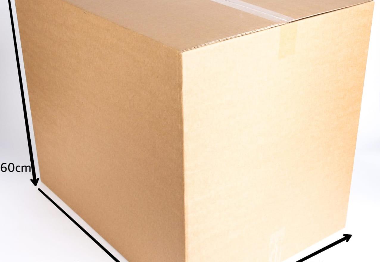 Carton - No. -1.jpeg