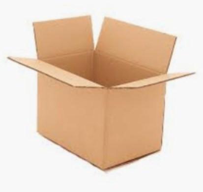 Carton -1.pg
