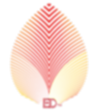 Endo Dynamic Logo