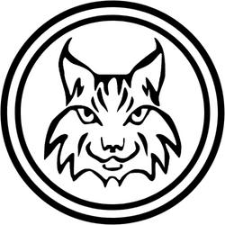 VVFFO Bobcat