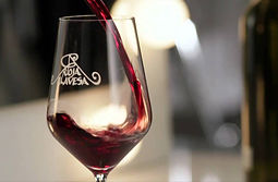 vitoria wine city vino rioja alava euskadi gasteiz vasco txakoli ayala aiara