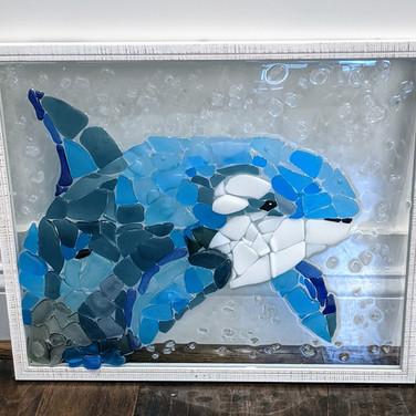 Orca framed