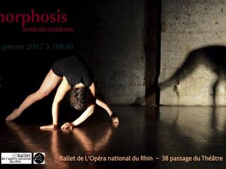 Accueil studio au Ballet de l'Opéra national du Rhin de Mulhouse