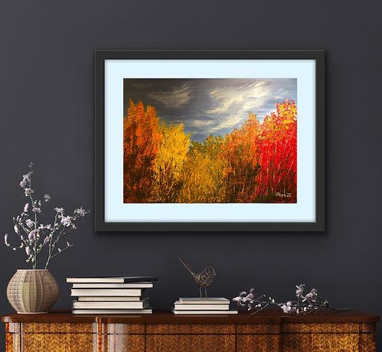 Autumn in woods