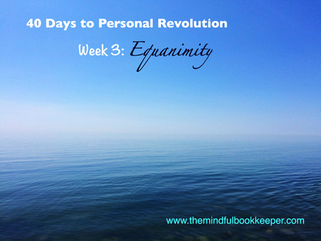 40 Days to Personal Revolution: Week 3 - EQUANIMITY