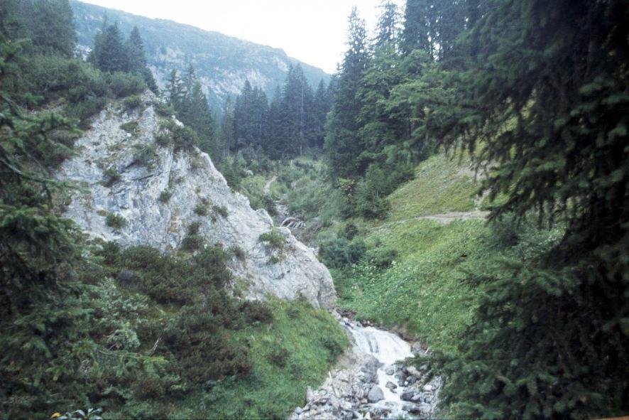y9909322arlberg.jpg