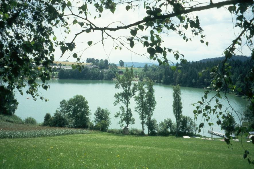 y9507180maltschachersee.jpg