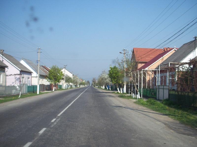 2011041880y.jpg