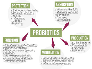 Probiotics. Are you getting enough?