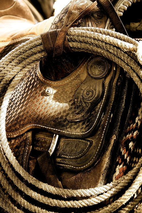 Rope & Saddle 24x36