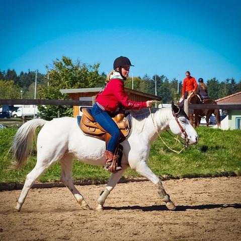 Ranch Riding Training