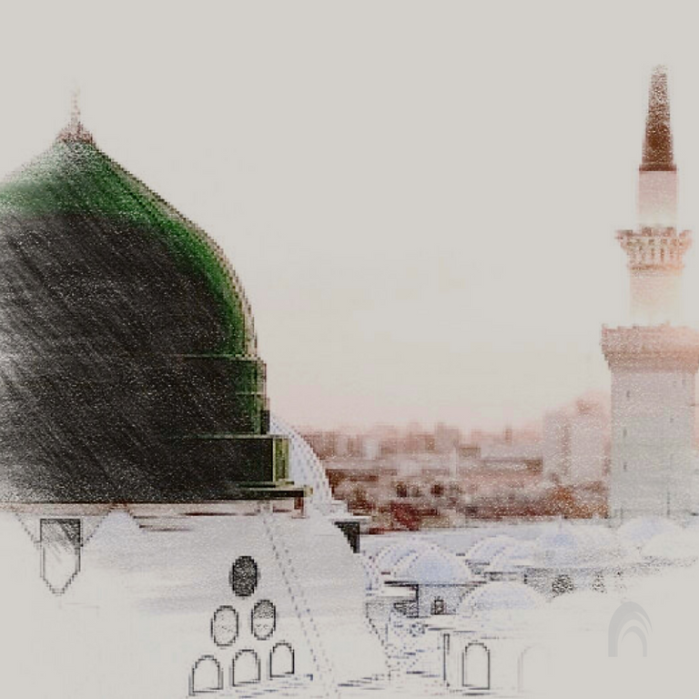 Biography   Sira - Shaykh Fa'iz Amir
