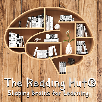 shaping_brains_reading_hut7.fw.png