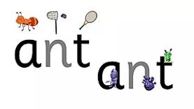 ant (1).webp