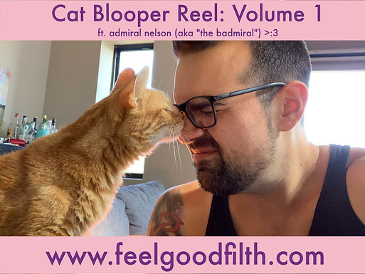 Cat Blooper Reel: Vol 1