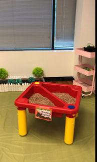 Social Play Room.jpg