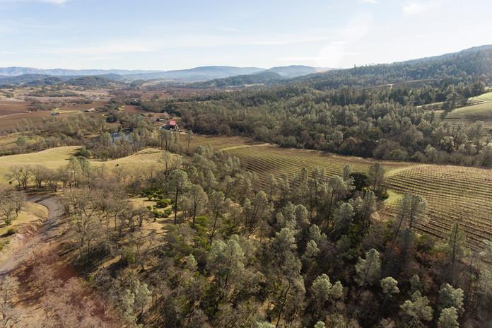 6307 Pope Valley Rd Aerial - 06.jpg