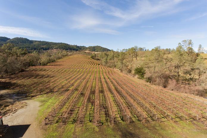 6307 Pope Valley Rd Aerial - 01.jpg